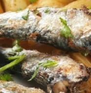 Sardine à l'agliolu / à l'ail